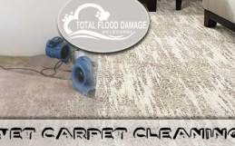 How Will You Deal With Wet Carpets In Your Home Or Office?