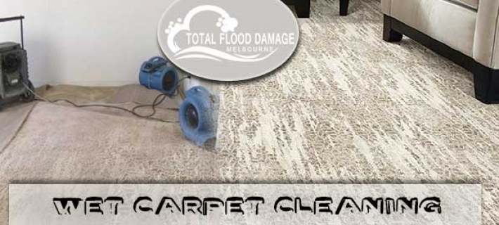 Reasons To Hire Professional Wet Carpet Cleaning Company, If You Don't Want To Suffer