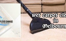 Top Tactics to Get Rid of Wet Carpet Cleaning from Professionals