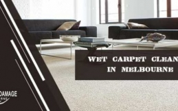 How Will You Hire An Expert Wet Carpet Dry Company? – Savvy Tricks!