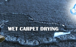 Tips To Include For Hiring The Right Carpet Water Damage Company