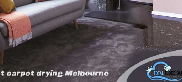 Which Cleaning Method Is Good For You Wet Carpet Cleaning Or Dry Carpet Cleaning?