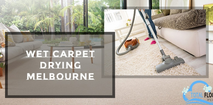 What Would Be A Better Approach? Wet Or Dry Carpet Cleaning?